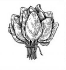№1 (Тісто з спіруліною та з фермерським сиром.шпинатом,в*яленими томатами та кедровими горішками ) 12pcs