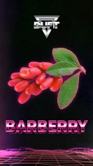 Duft 100гр Barberry