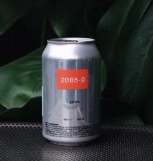 2085-9 2x IPA