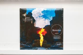 BONOBO - Migration