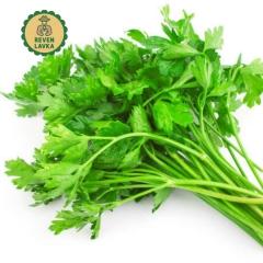 Салати та зелень