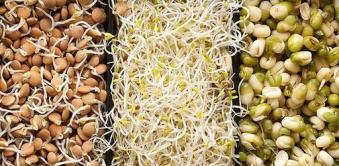 Борошно з пророщеного зерна