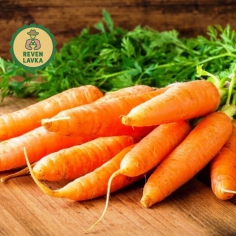 Морква солодка