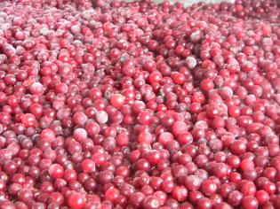 Смородина червона 1 кг