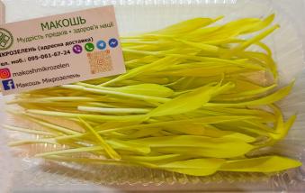 Жовтогаряча Кукурудза, 50 гр.