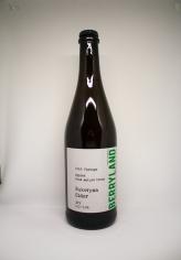 Berrylands Bukovyna Cider Brut (2018 Vintage) 0.75