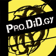 Pro.DiD.gy          DIPA   (0,5л)