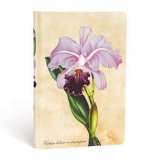 Brazilian Orchid, mini, 9781439735725